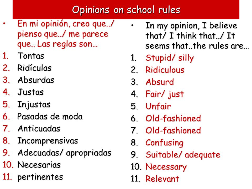 Opinions on school rules