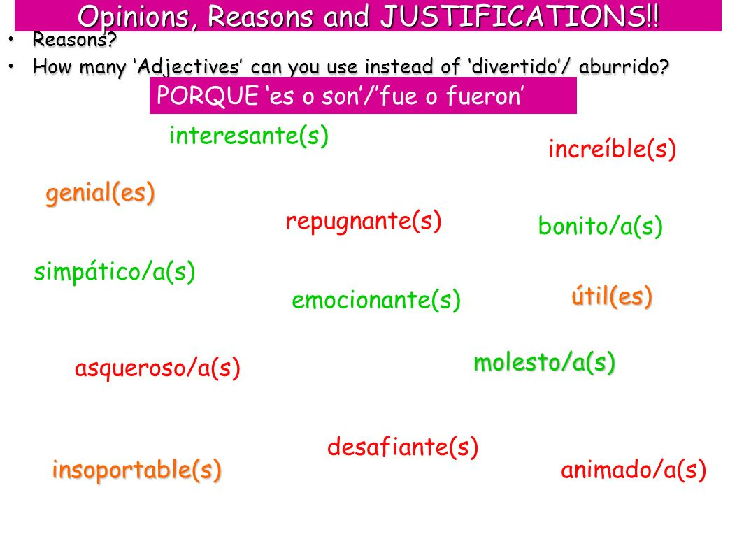 Opinions, Reasons and JUSTIFICATIONS!!
