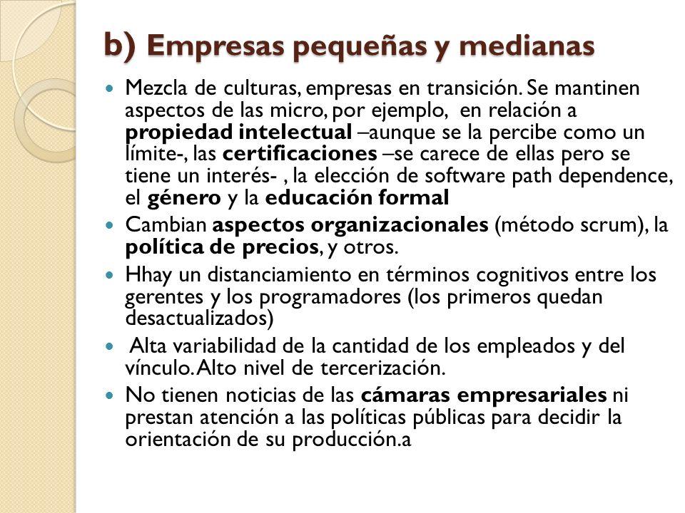 b) Empresas pequeñas y medianas
