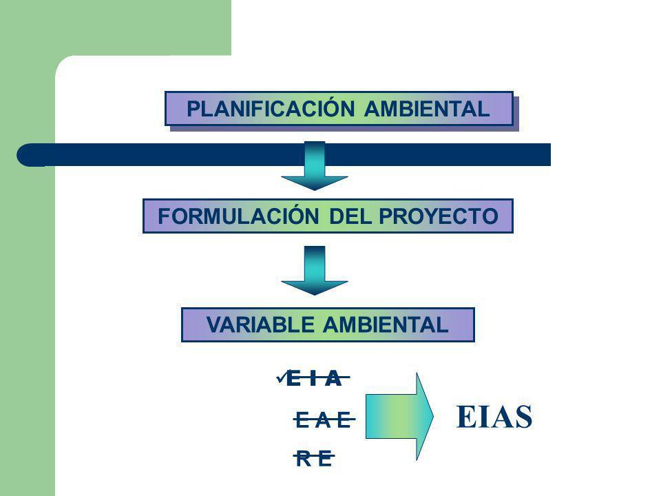 FORMULACIÓN DEL PROYECTO PLANIFICACIÓN AMBIENTAL
