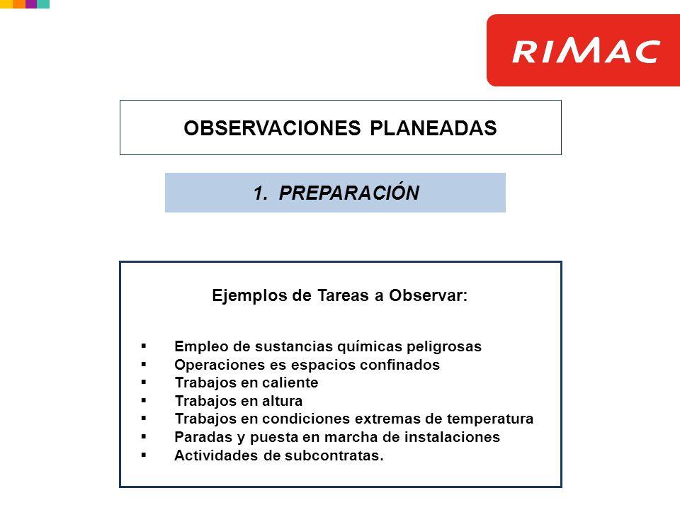 OBSERVACIONES PLANEADAS Ejemplos de Tareas a Observar: