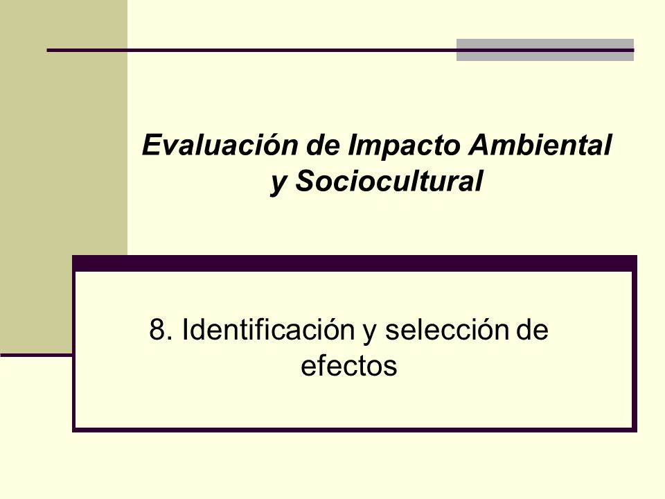 8. Identificación y selección de efectos