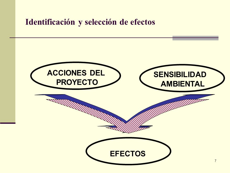 Identificación y selección de efectos