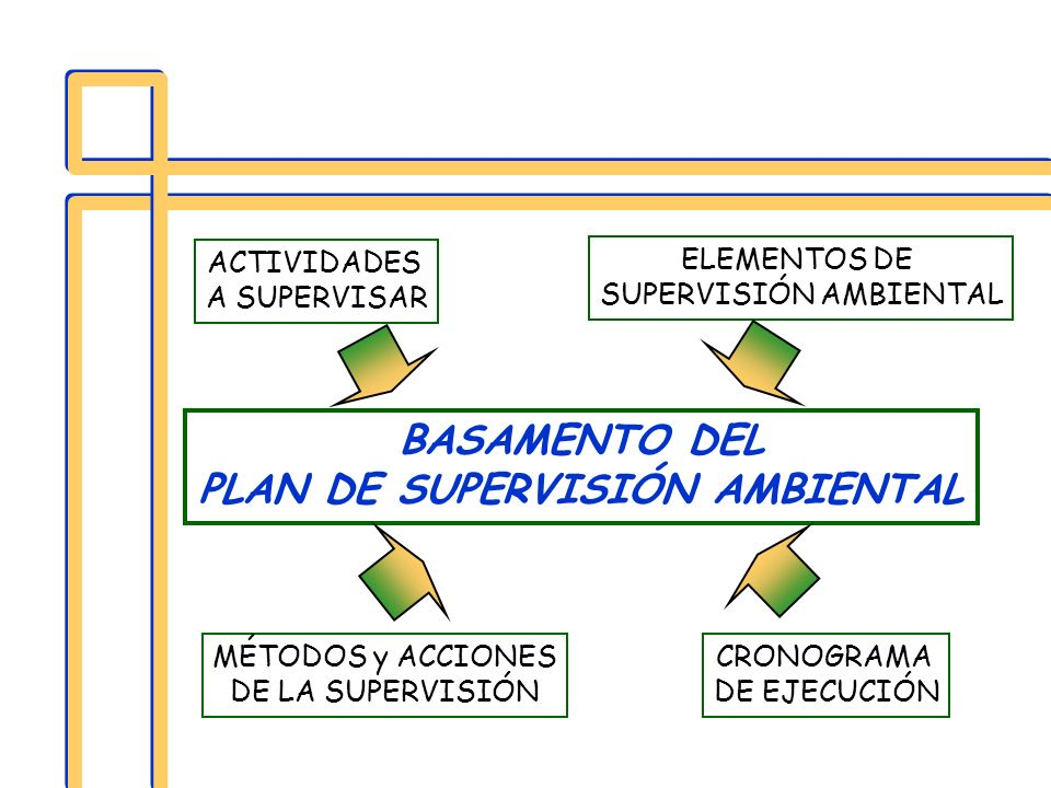 PLAN DE SUPERVISIÓN AMBIENTAL