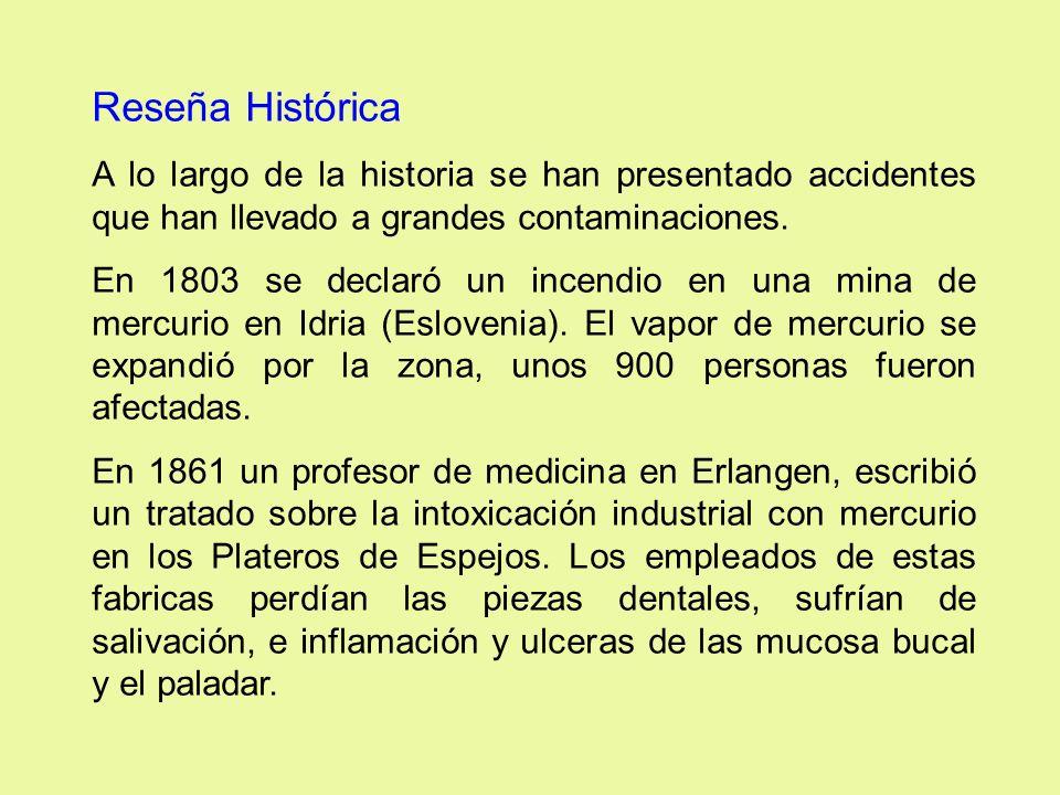 Reseña Histórica A lo largo de la historia se han presentado accidentes que han llevado a grandes contaminaciones.