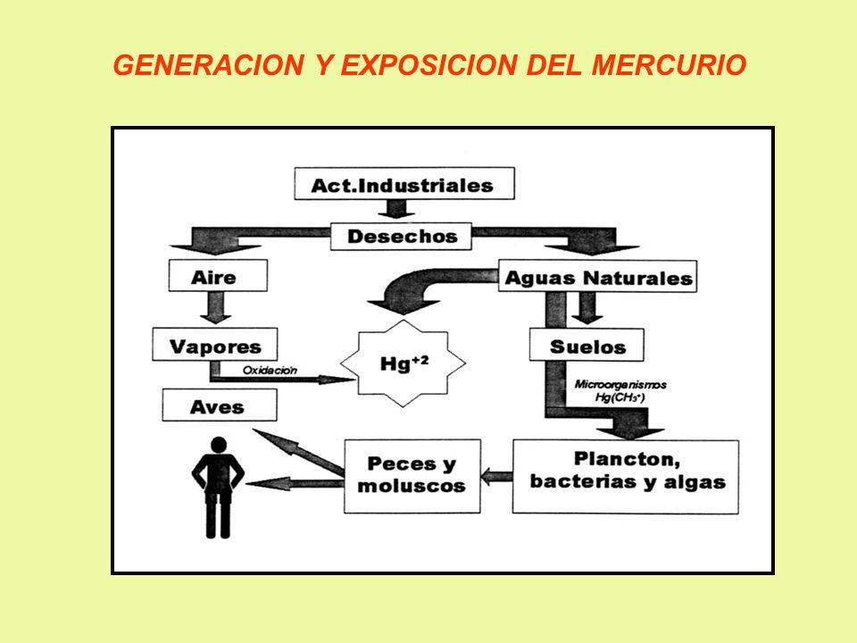 GENERACION Y EXPOSICION DEL MERCURIO