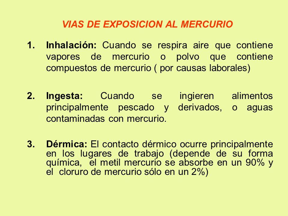 VIAS DE EXPOSICION AL MERCURIO