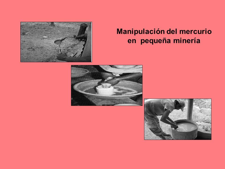 Manipulación del mercurio en pequeña minería
