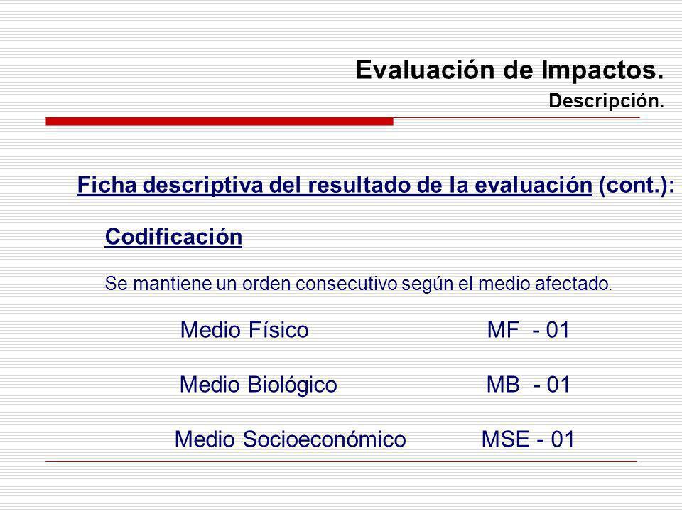Ficha descriptiva del resultado de la evaluación (cont.):