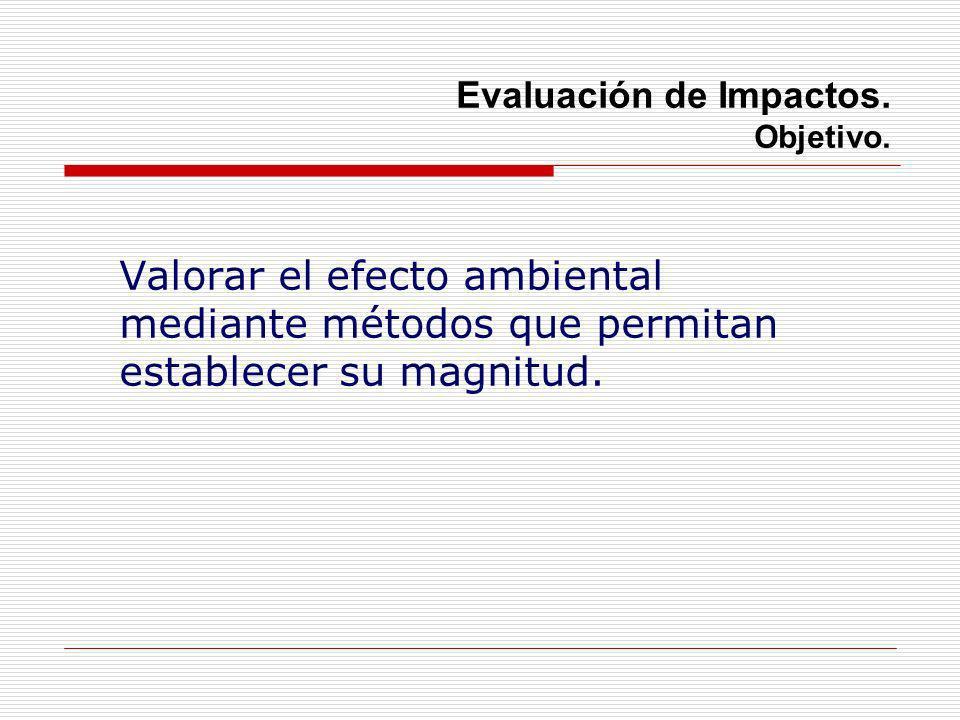 Evaluación de Impactos. Objetivo.