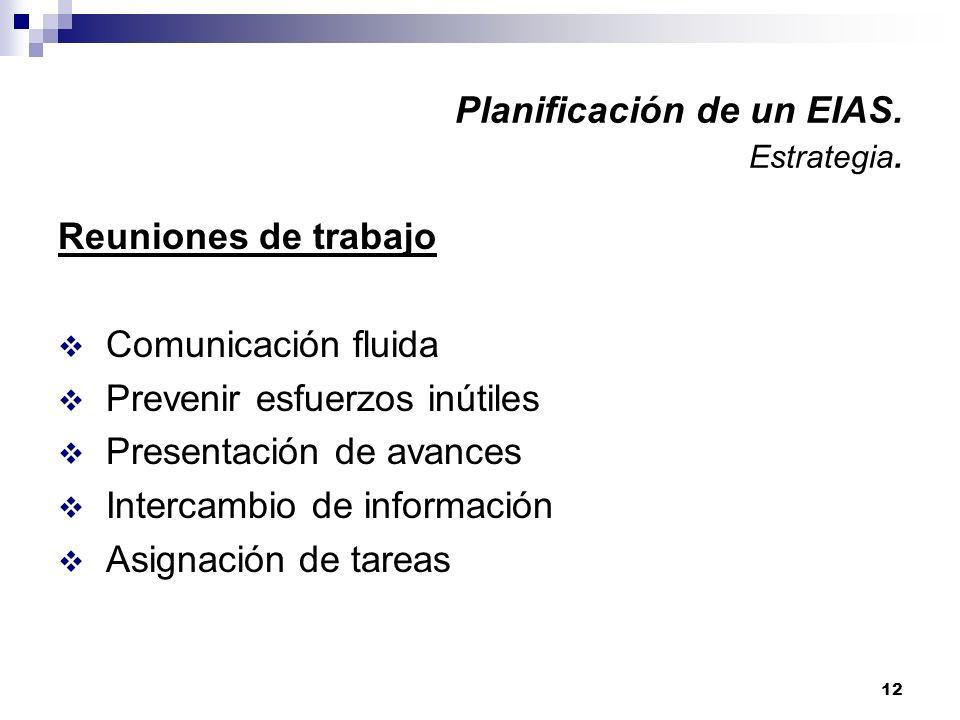Planificación de un EIAS. Estrategia.