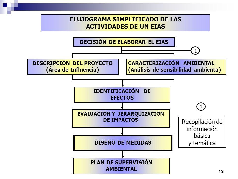 FLUJOGRAMA SIMPLIFICADO DE LAS ACTIVIDADES DE UN EIAS