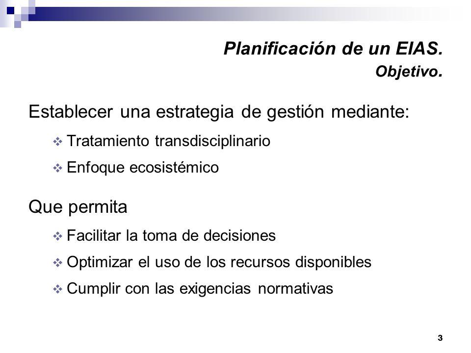 Planificación de un EIAS. Objetivo.
