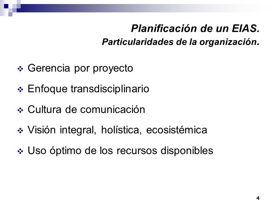 Planificación de un EIAS. Particularidades de la organización.