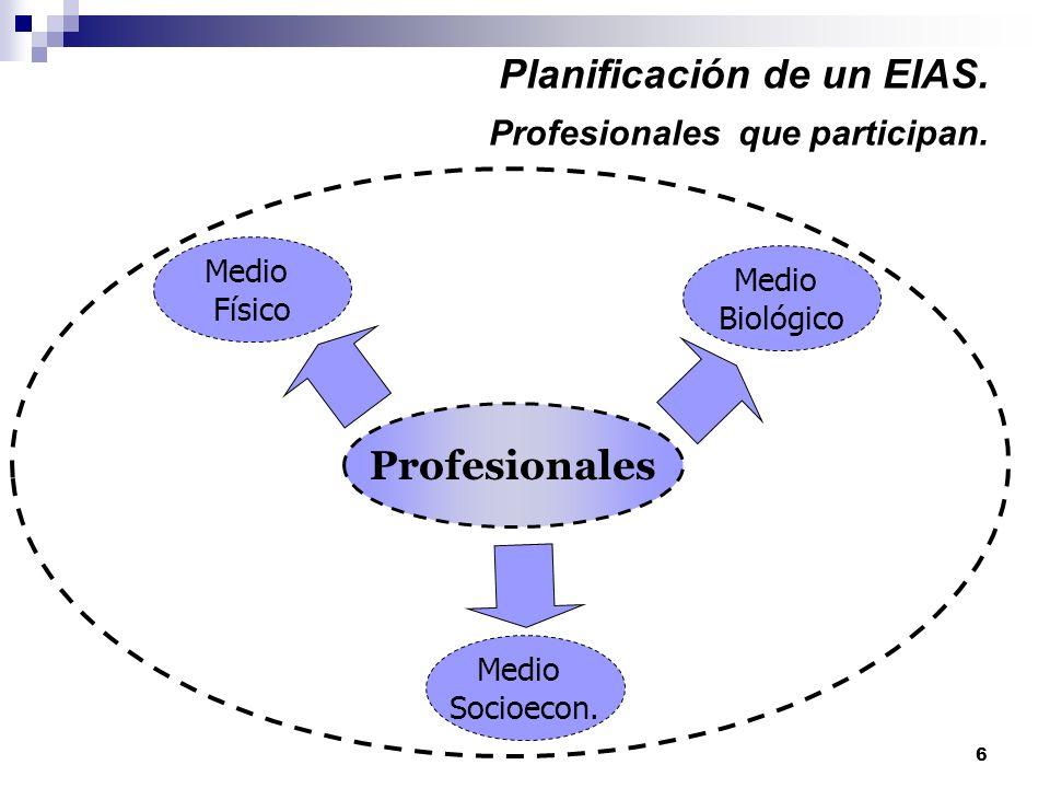Planificación de un EIAS. Profesionales que participan.