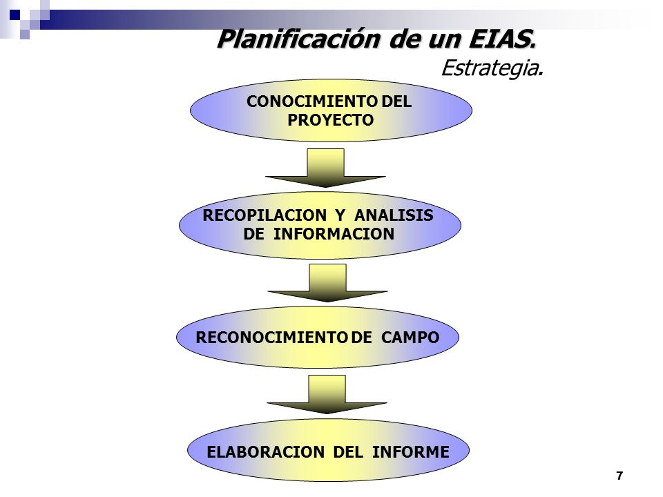Planificación de un EIAS.