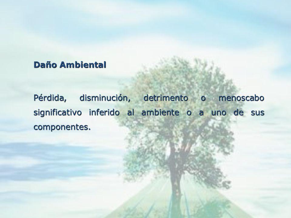 Daño AmbientalPérdida, disminución, detrimento o menoscabo significativo inferido al ambiente o a uno de sus componentes.