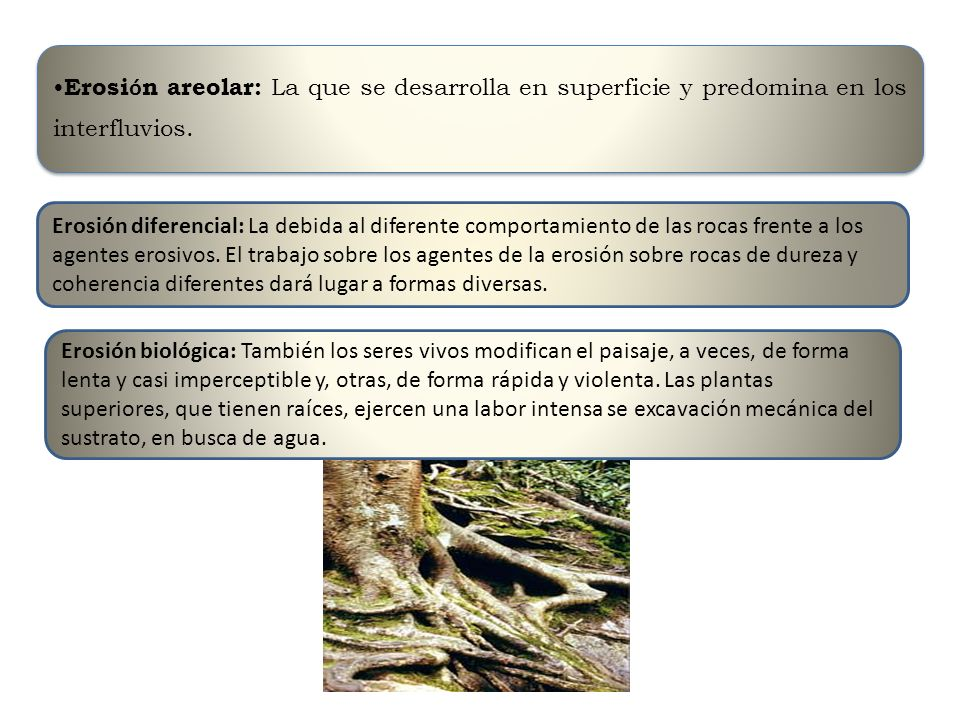 Erosión areolar: La que se desarrolla en superficie y predomina en los interfluvios.