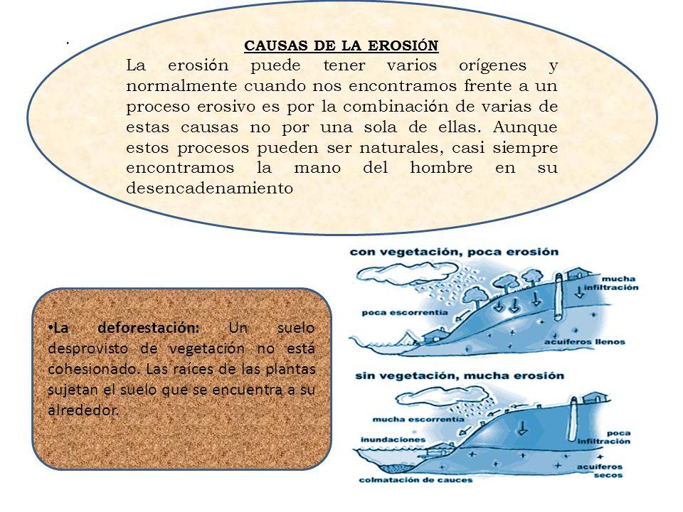CAUSAS DE LA EROSIÓN