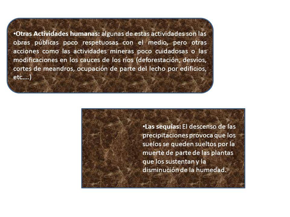 Otras Actividades humanas: algunas de estas actividades son las obras públicas poco respetuosas con el medio, pero otras acciones como las actividades mineras poco cuidadosas o las modificaciones en los cauces de los ríos (deforestación, desvíos, cortes de meandros, ocupación de parte del lecho por edificios, etc.…)