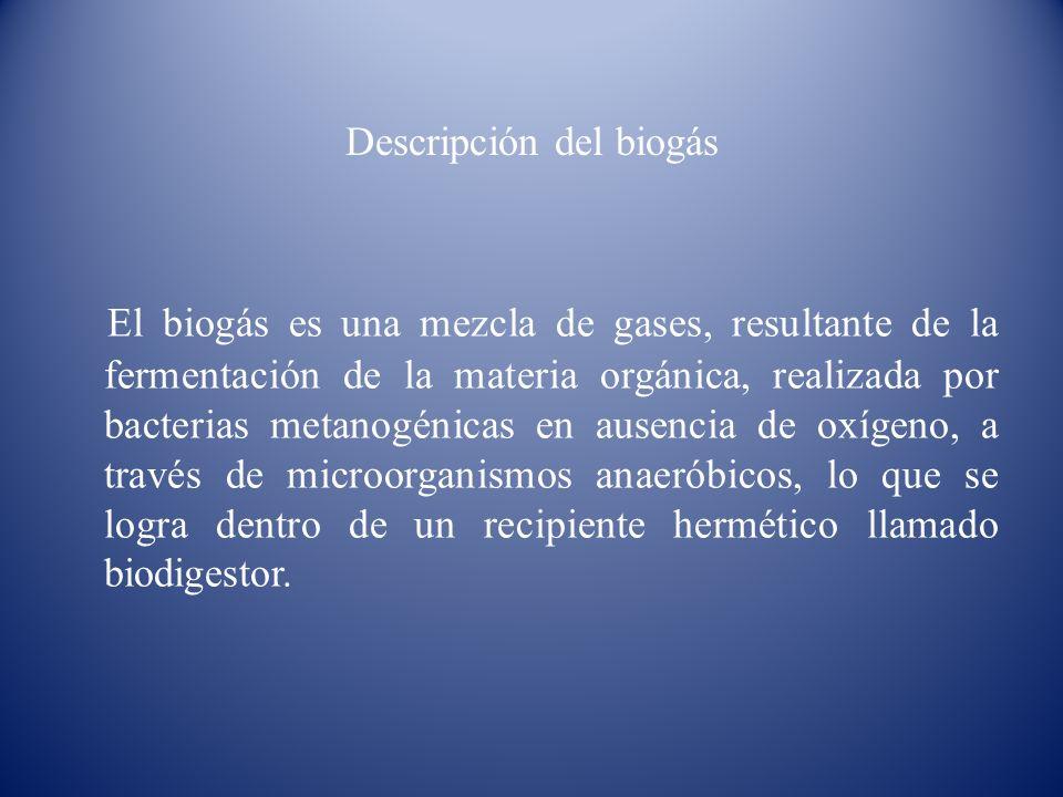 Descripción del biogás