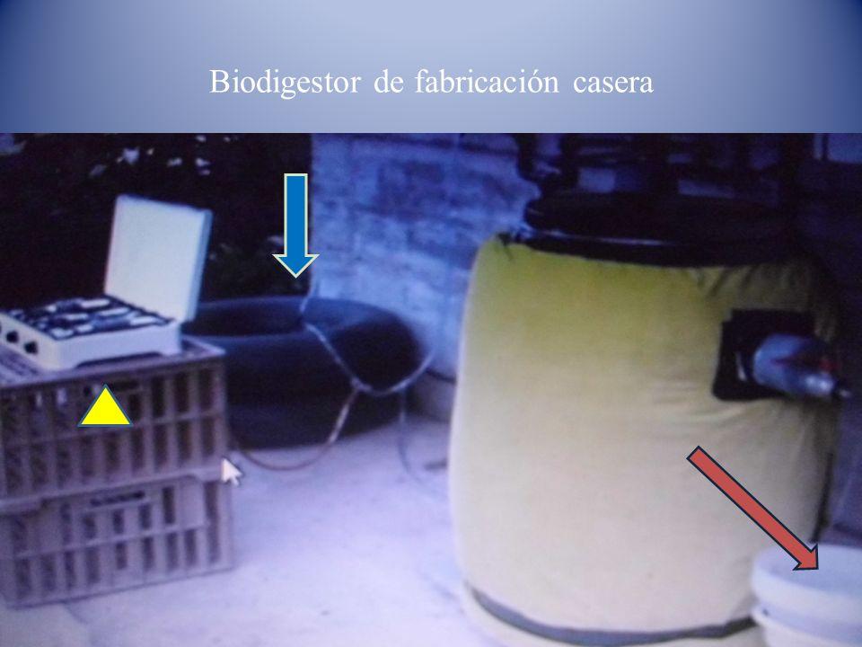 Biodigestor de fabricación casera