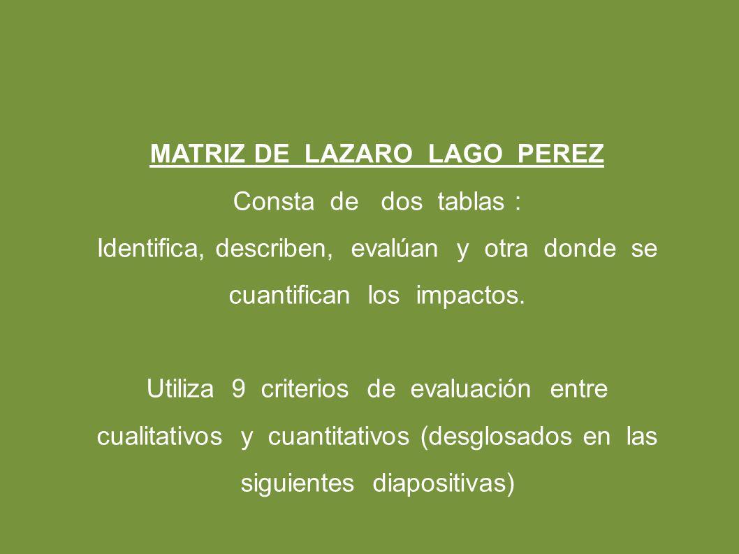 MATRIZ DE LAZARO LAGO PEREZ