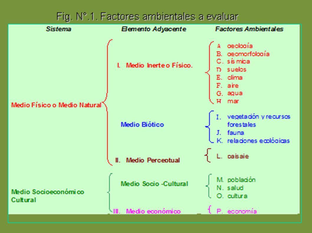 Diagrama sugerido por lazaro lago en su metodo (en especial los factores ambientales)