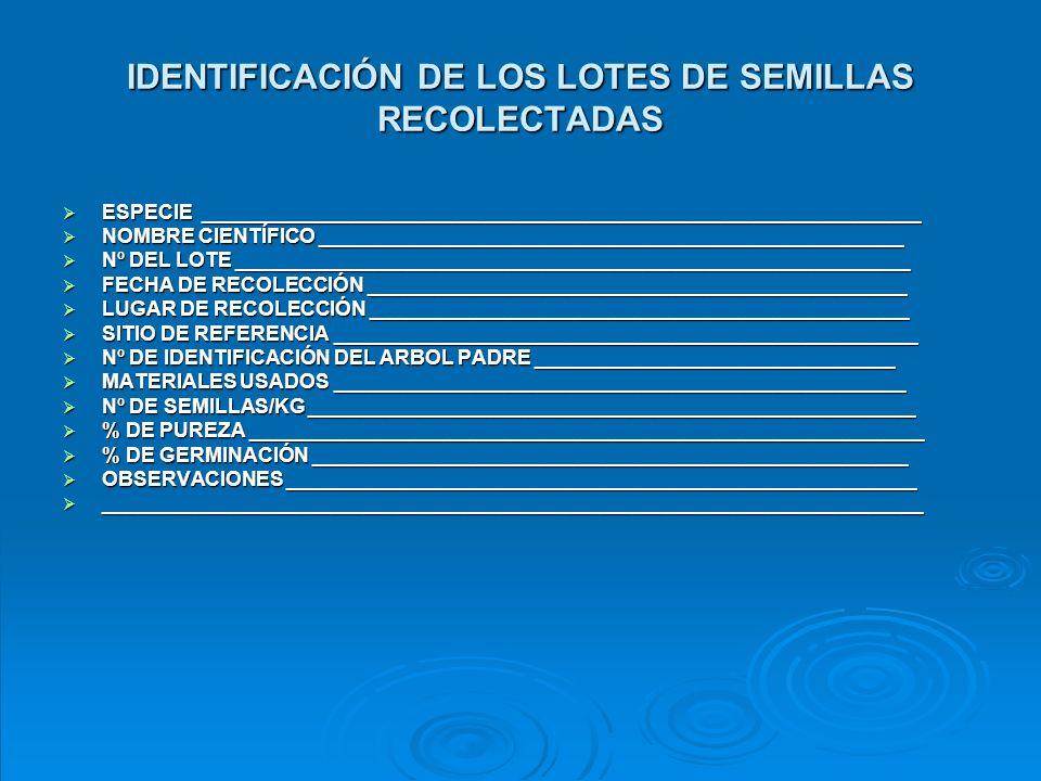 IDENTIFICACIÓN DE LOS LOTES DE SEMILLAS RECOLECTADAS