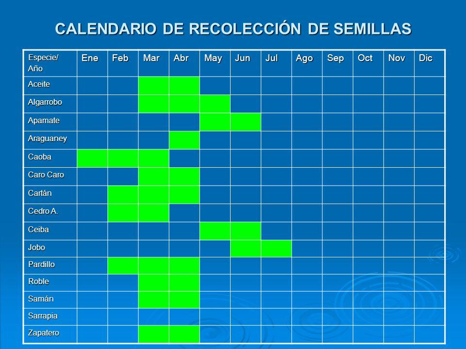 CALENDARIO DE RECOLECCIÓN DE SEMILLAS