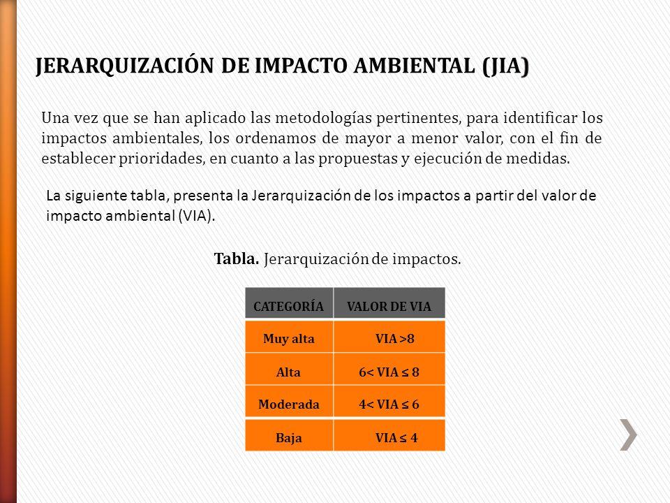 JERARQUIZACIÓN DE IMPACTO AMBIENTAL (JIA)