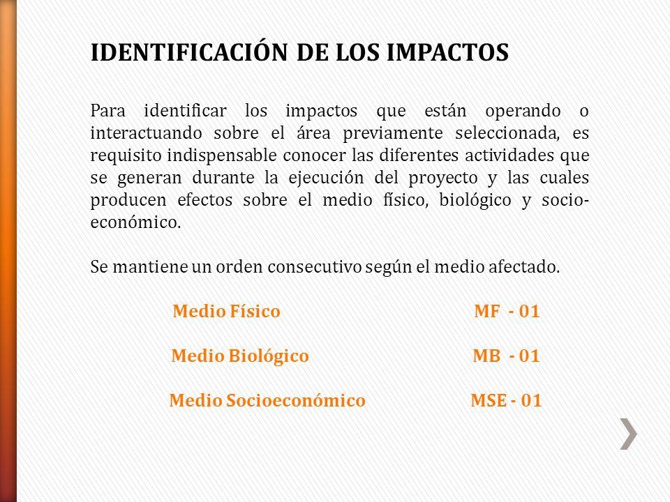 Medio Socioeconómico MSE - 01