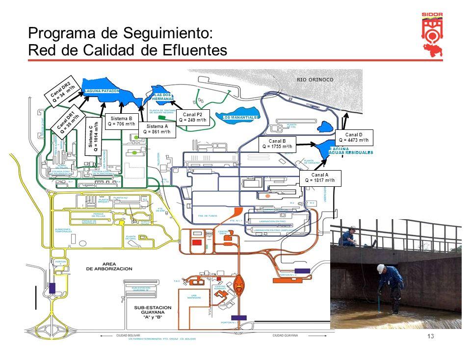 Programa de Seguimiento: Red de Calidad de Efluentes