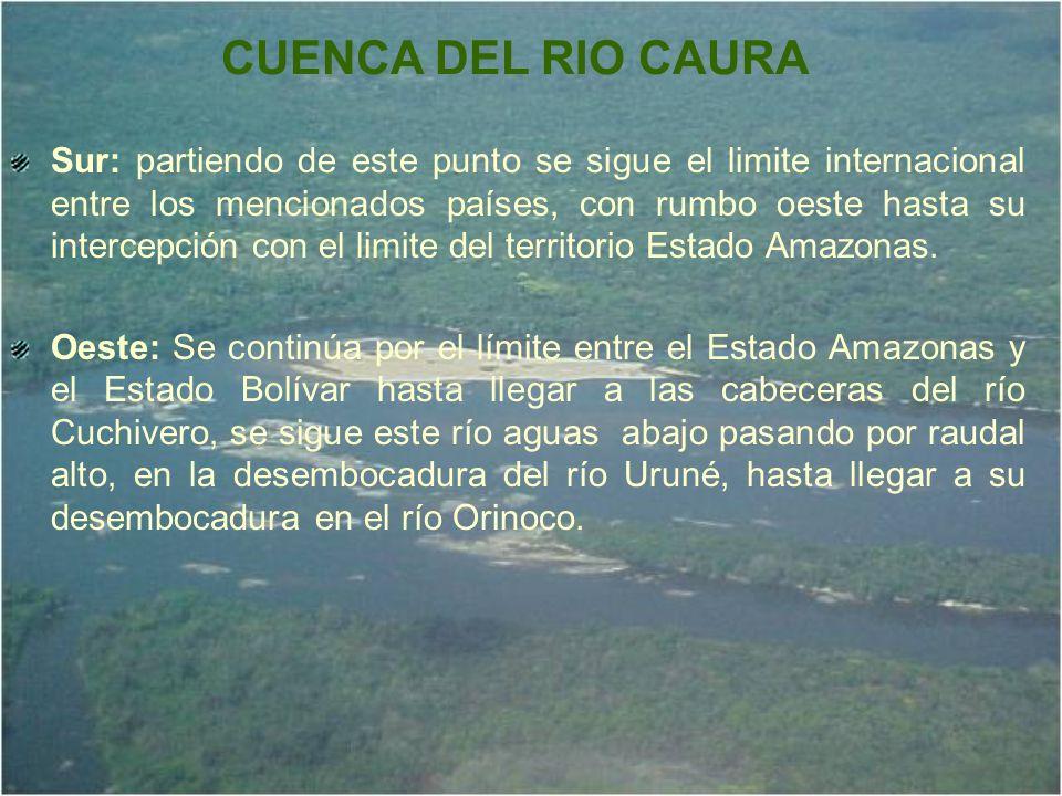 CUENCA DEL RIO CAURA