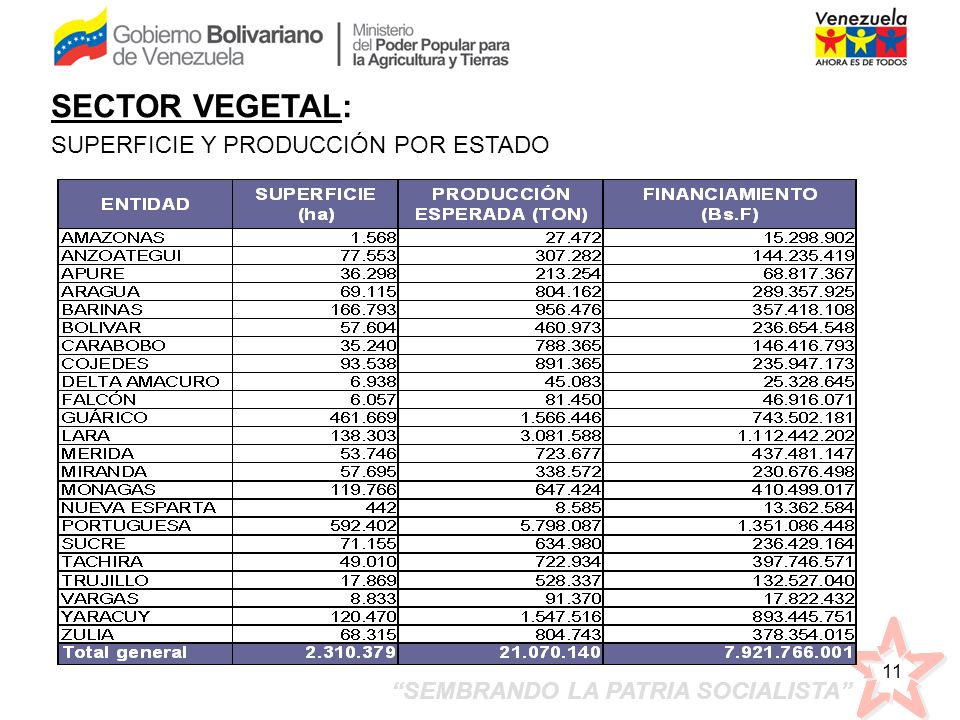SECTOR VEGETAL: SUPERFICIE Y PRODUCCIÓN POR ESTADO