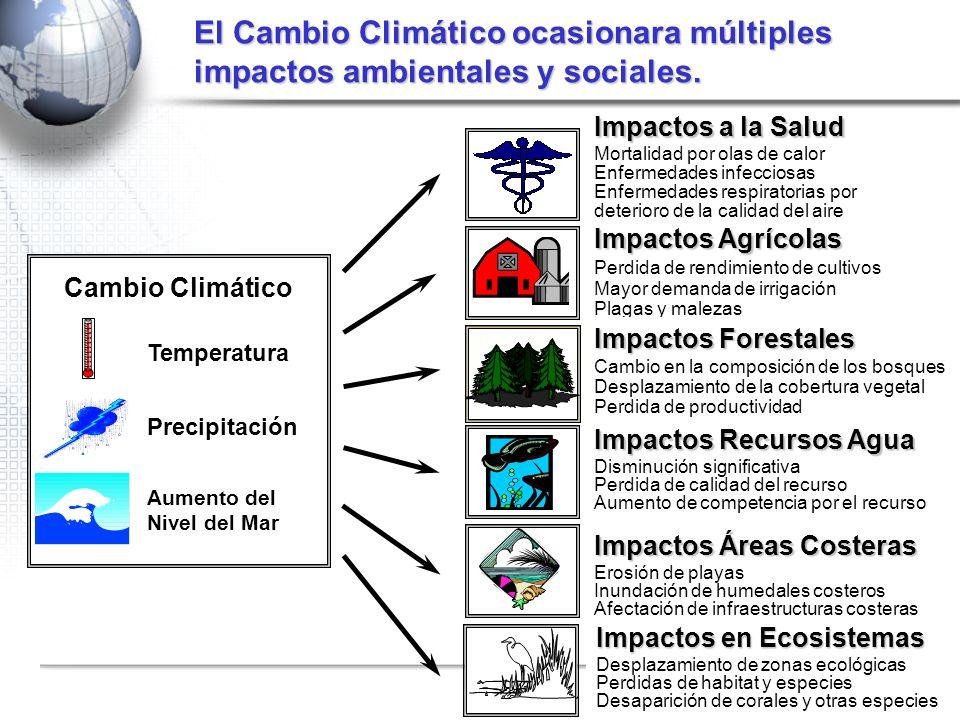 El Cambio Climático ocasionara múltiples impactos ambientales y sociales.