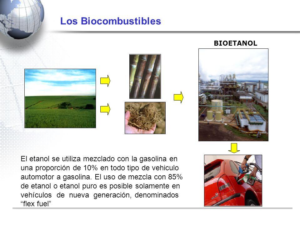 Los Biocombustibles BIOETANOL.