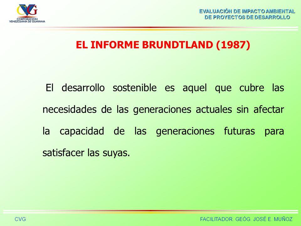 EL INFORME BRUNDTLAND (1987)