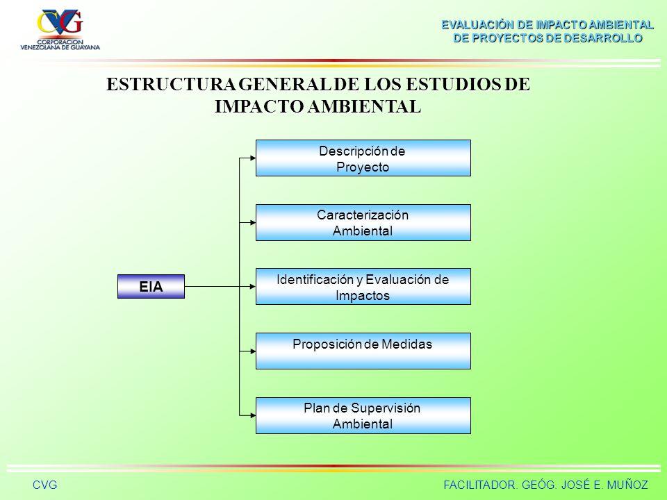 ESTRUCTURA GENERAL DE LOS ESTUDIOS DE