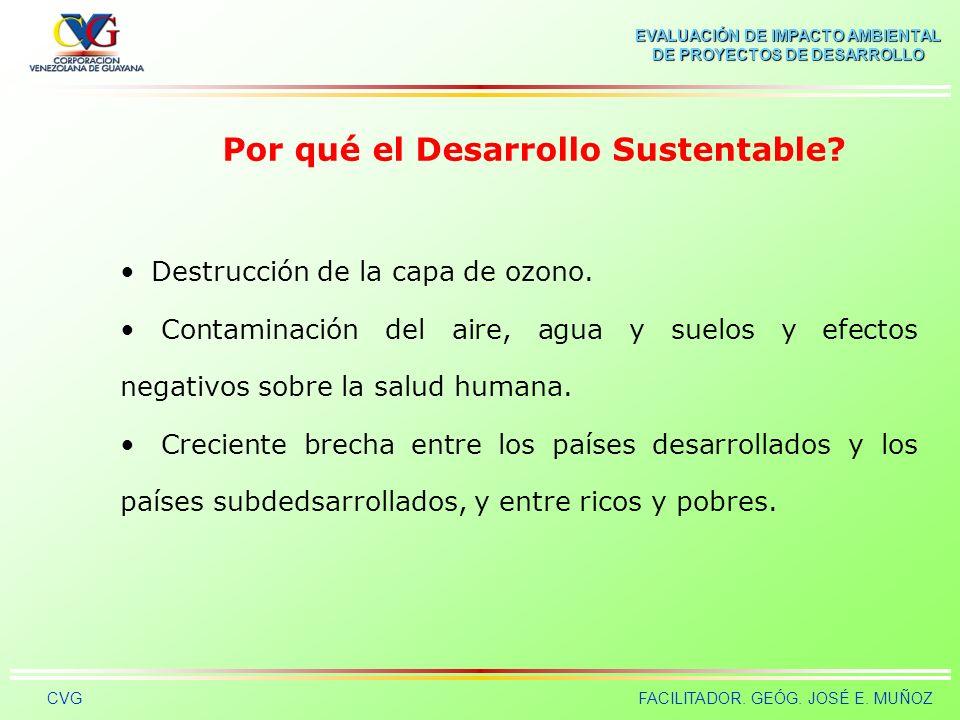Por qué el Desarrollo Sustentable