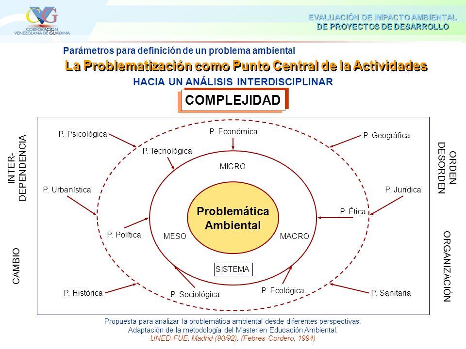 COMPLEJIDAD La Problematización como Punto Central de la Actividades