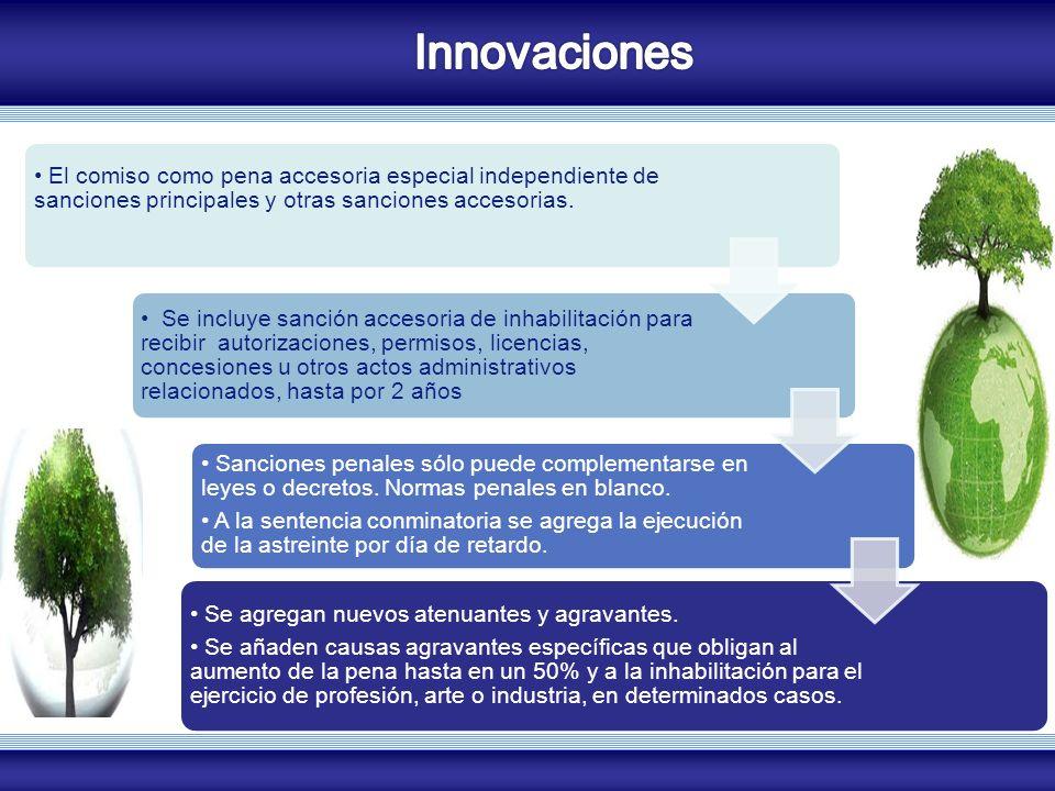 Innovaciones COZUCUID - LUZ