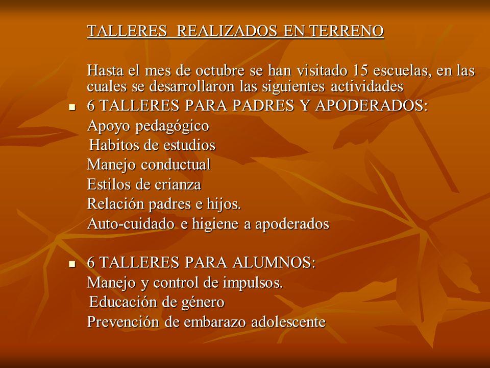TALLERES REALIZADOS EN TERRENO