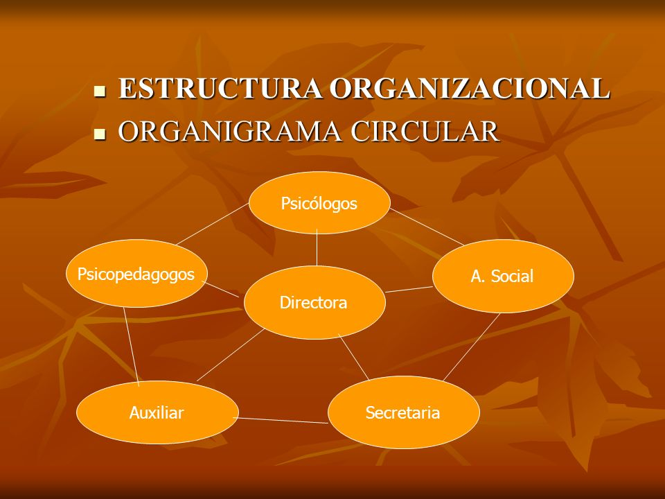 ESTRUCTURA ORGANIZACIONAL ORGANIGRAMA CIRCULAR