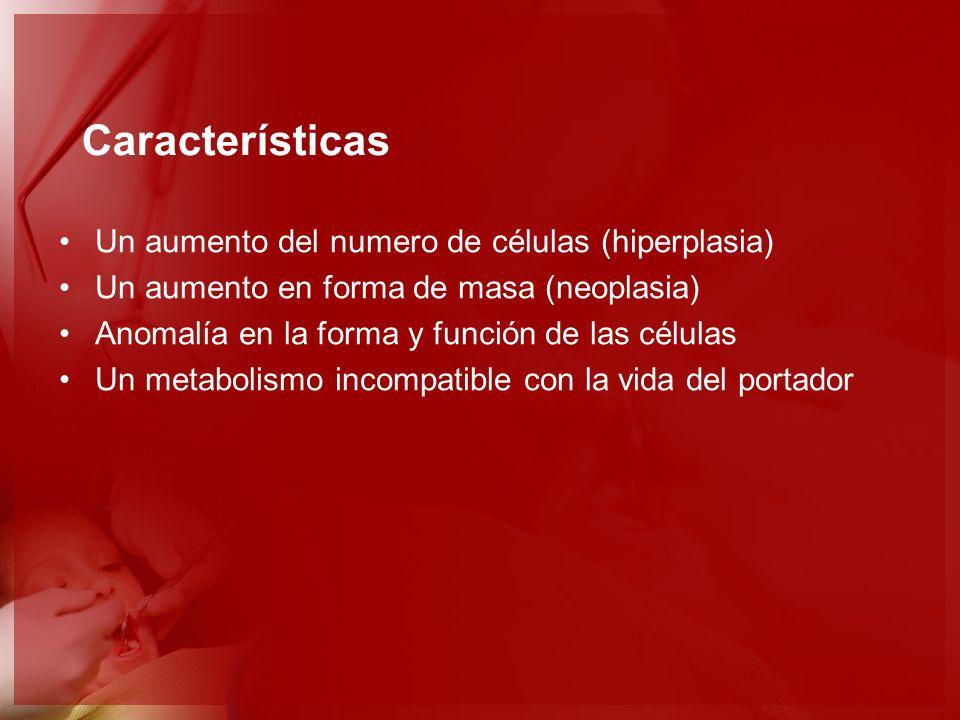 Características Un aumento del numero de células (hiperplasia)