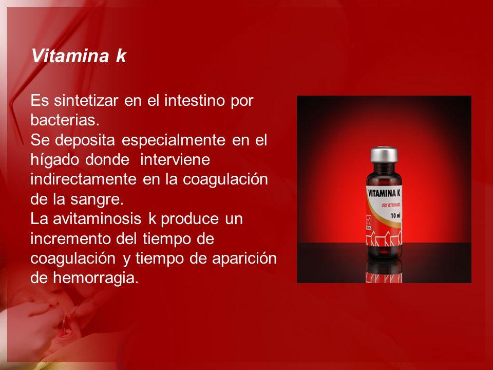 Vitamina k Es sintetizar en el intestino por bacterias