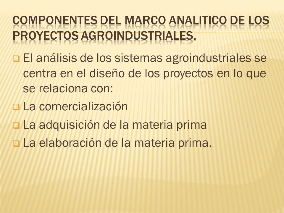 COMPONENTES DEL MARCO ANALITICO DE LOS PROYECTOS AGROINDUSTRIALES.
