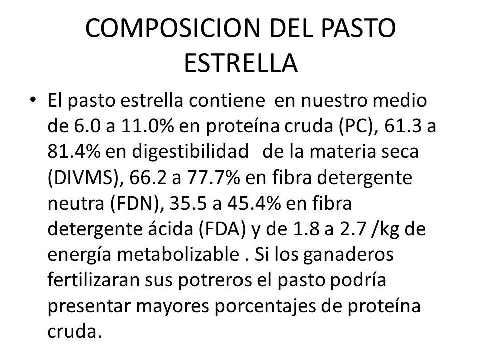 COMPOSICION DEL PASTO ESTRELLA