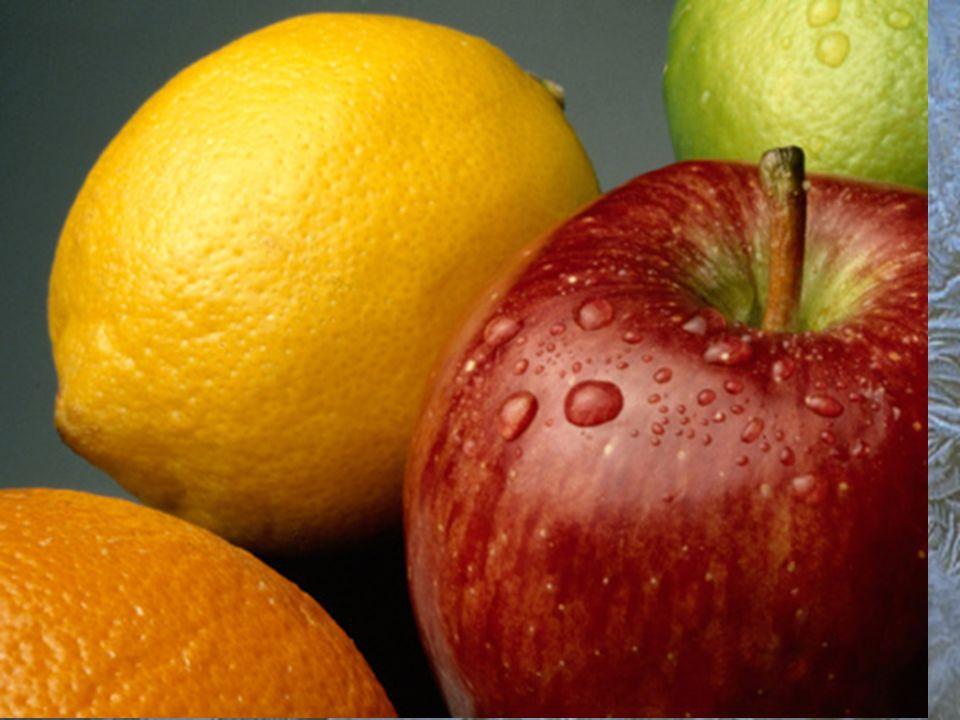 Factores de importancia en la refrigeración