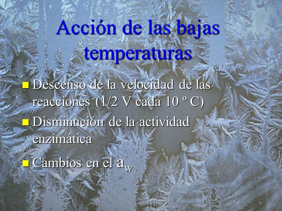 Acción de las bajas temperaturas